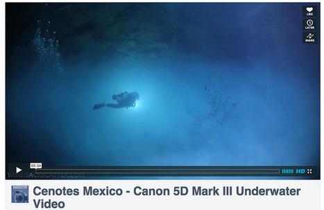 Canon 5D Mark III - Underwater Video Samples | Flickr - Photo ... | Canon EOS 5D Mark III | Scoop.it
