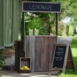 3 Ways to Go Beyond the Lemonade Stand this Summer | Rise of the Fourth Economy | Scoop.it
