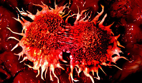 Newly Discovered Tumor Suppressor Protein May Provide New Cancer Therapy Solutions | New Science | Scoop.it