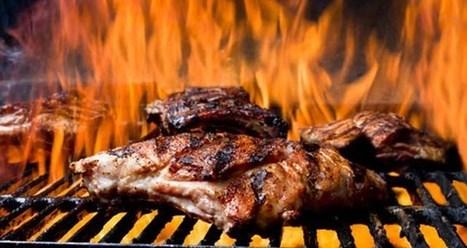 Las carnes rojas del eLearning - oJúLearning | Educacion, ecologia y TIC | Scoop.it