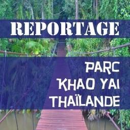 Visite du parc de Khao Yai - Conseils de voyage en Thaïlande | La Thailande et l'Asie | Scoop.it