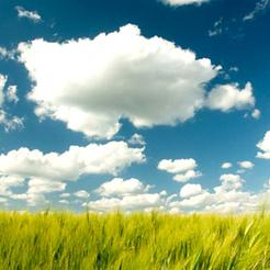 Como computação em nuvem está ajudando empresas verdes | Digital Sustainability | Scoop.it