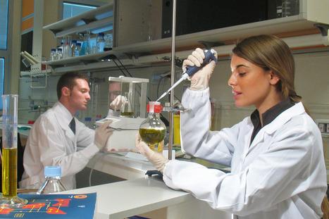 VIOLIN: un progetto per la valorizzazione dell'olio attraverso la scienza | Fondazione Mach | Scoop.it