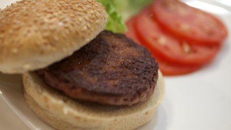 Test-tube burger, dubbed the Frankenburger, undergoes taste test in London | Genetically Modified Food | Scoop.it