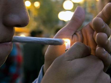 Teen pot use could hurt brain and memory, new research suggests - NBCNews.com | Guys, Dads, Husbands, Sons | Scoop.it