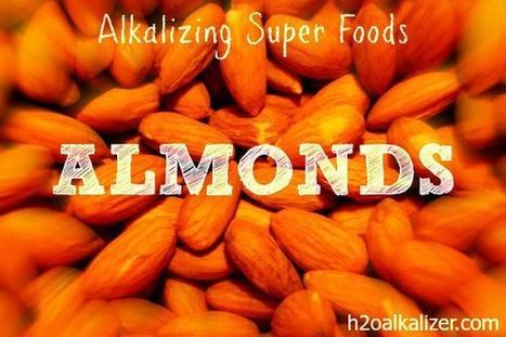 Alkalizing Superfoods: Almonds   The Basic Life   Scoop.it