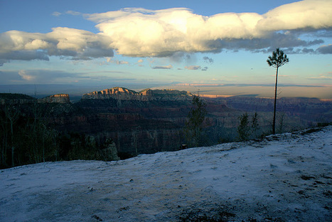 Fall in the Grand Canyon | Life @ Work | Scoop.it