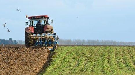 Un numéro d'écoute dans la Marne pour les agriculteurs en difficulté | L'actu agricole dans la Marne et la région | Scoop.it