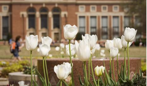 Oklahoma State University | Oklahoma State University Education | Scoop.it