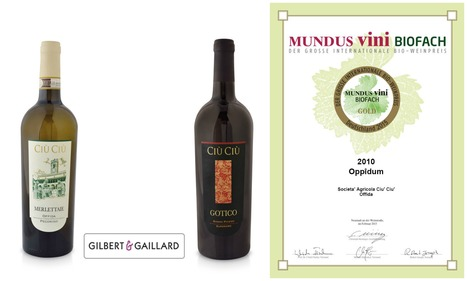 Happy January for the Ciù Ciù winery   Wines and People   Scoop.it