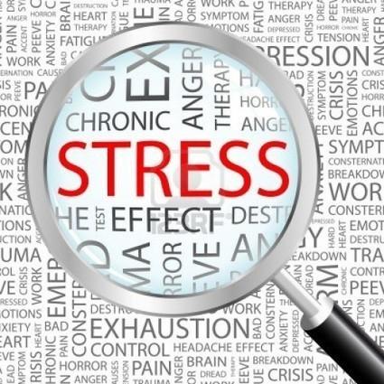Qu'est-ce que le stress ? | Vivre en harmonie | Scoop.it