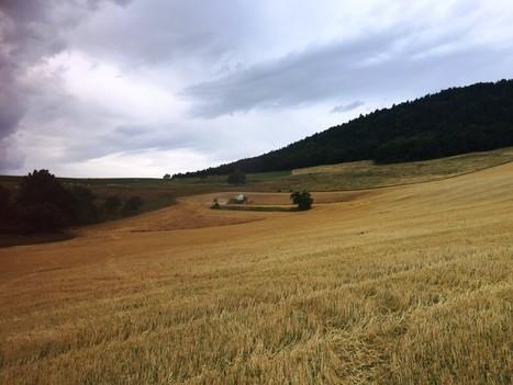 Moissons #8 | Domaine des Hautes Glaces | Gastronomy & Wines | Scoop.it