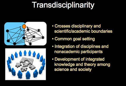 Transdisciplinarity podcast from IPAS planning workshop | Transdisciplinarity in Collaborative Virtual Environments | Scoop.it