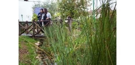 Commune sans pesticides: plus qu'une révolution technique, une révolution culturelle! | Veille en dilettante | Scoop.it