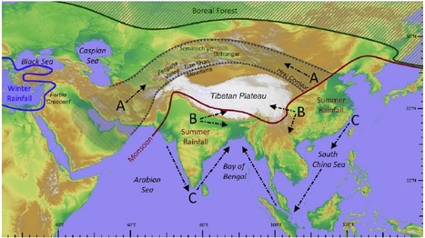 Between China and South Asia: A Middle Asian corridor of crop dispersal and agricultural innovation in the Bronze Age | Kaogu | Scoop.it