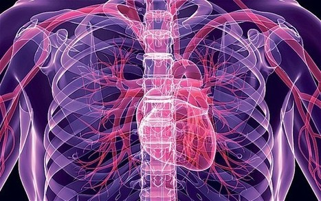 Drones could be used to seek out arteries to prevent heart attacks  - Telegraph | Living Life As Well As We Can | Scoop.it