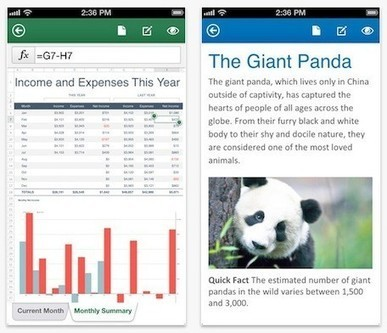 Office for iPad will debut after next Windows version | Macwidgets..some mac news clips | Scoop.it