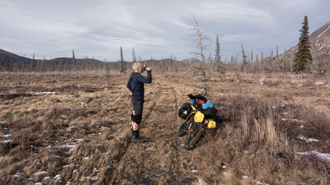 New Endurance Records Set as Snow Vanishes From Iditarod Trail | Everything Else | Scoop.it