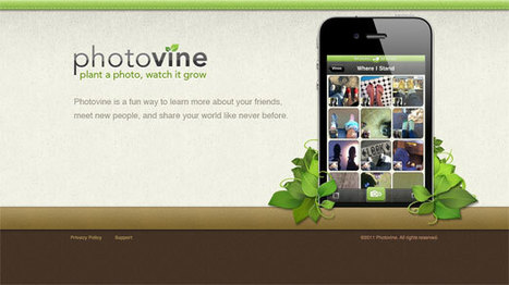 Google's mysterious Photovine looks like a photo-sharing service   SOCIAL MEDIA, what we think about!   Scoop.it