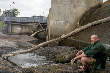 Setting rivers free: As dams are torn down, nature is quickly recovering | Sustain Our Earth | Scoop.it