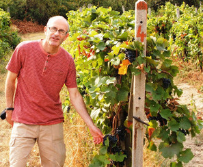 "WineWriting.com by Richard Mark James: Bordeaux: ""under a tenner... mostly."" | Nombrilisme | Scoop.it"