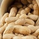 Le polymère de cacahuète, successeur du bois composite   Efficycle   Scoop.it