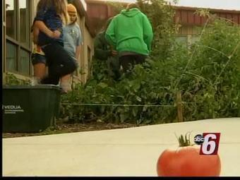 Rochester, MN School Uses a Garden as a Teaching Tool | School Gardening Resources | Scoop.it