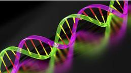 Descubren gen agresivo de cáncer de próstata - BBC Mundo - Noticias | Salud Press Chile | Scoop.it