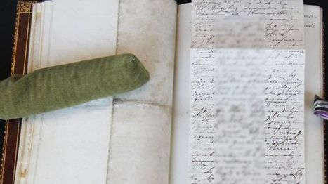 Unpublished Charlotte Bronte works 'to join UK collection' - BBC News | Gothic Literature | Scoop.it