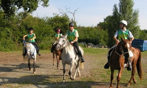 Endurance équestre :  plus de 100 cavaliers attendus | Cheval et sport | Scoop.it