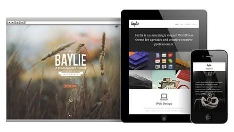 Baylie Full Screen WordPress Theme   Ricantos   Scoop.it
