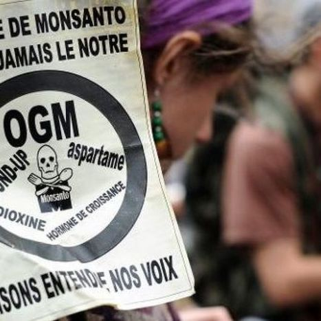 OGM: le Parlement européen recale la Commission, et Monsanto vise la France | Nourrir la planète... autrement | Scoop.it