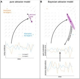 A Bayesian Attractor Model for Perceptual Decision Making | Social Foraging | Scoop.it