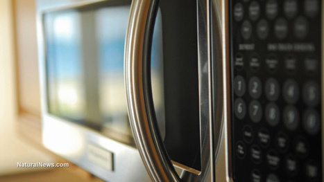 Years ago #Russia researched the biological effects of microwave ovens... then banned them #health | Messenger for mother Earth | Scoop.it
