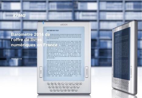 Livres numériques: le panorama de l'offre en 2014 en France | Actualités: livres numériques | Scoop.it