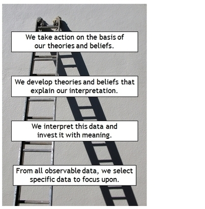 Racing Up the Ladder of Inference | Business Performance Excellence Models | Scoop.it