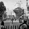 Quels sont les enjeux de la nouvelle Constitution égyptienne ?   Égypt-actus   Scoop.it