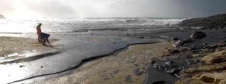 Marée noire de BP: ce qu'on ne nous dit pas ! | Le saviez-vous? | Scoop.it
