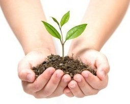 How to Nurture a Marketing Lead? - SMARTe Inc.   Content Curation by Prabhakar online   Scoop.it