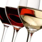 Abruzzo, 1,2 Milioni Di Euro Per Attivita' Promozionale Vino   Prodotti Tipici   Scoop.it
