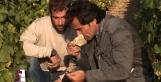 Un Verre de Terroir : Découvrir le Pouilly Fumé avec Louis Benjamin Dagueneau | Les vidéos de l'Avis du Vin | Scoop.it