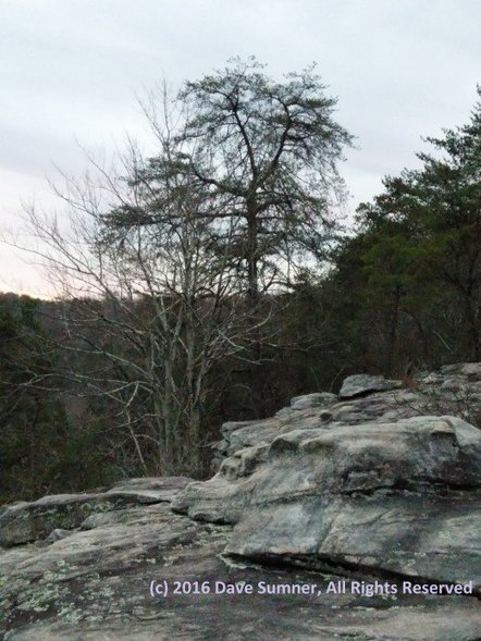 Visiting Georgia State Parks - Cloudland Canyon State Park - Sightseeing, Hiking, and Camping in a Class B RV | Dave Sumner's World | Scoop.it
