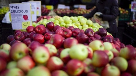 The Most Nutritious Types of Apples, Ranked by Antioxidant Levels | Allergy shots | Scoop.it