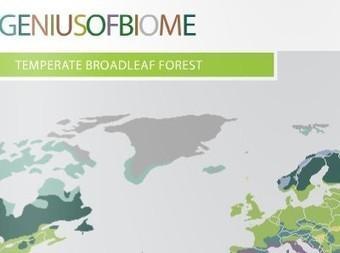 Genius of Biome Report: a Biomimicry Primer | Biomimicry | Scoop.it