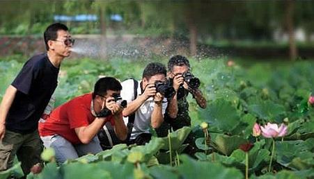 Como crear ese ambiente mágico en tus fotos. | FOTOGRAFIA O VIDEO? | Scoop.it