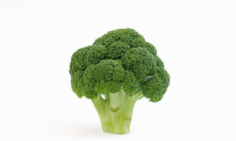 BBSRC mention: Eating broccoli may prevent osteoarthritis | BIOSCIENCE NEWS | Scoop.it