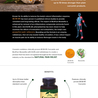 Vitasave - Canada's top online vitamin and supplement store