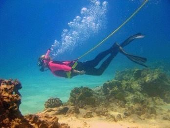 How to Build Your Own Hookah Diving System | All about water, the oceans, environmental issues | Scoop.it