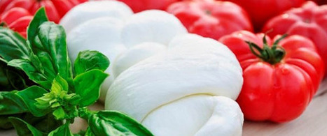 Expo 2015: online le PMI agroalimentari Made in Italy | Imprese, Start-up, PMI, Terzo Settore | Scoop.it