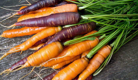 Study Finds Lower Pesticide Levels in People Who Eat Organic Produce - EcoWatch   EOH current topics   Scoop.it